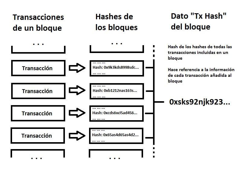 Tx Hash grafico